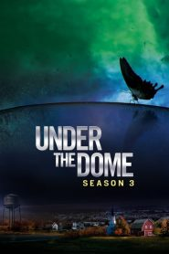 Under the Dome: Sezona 3
